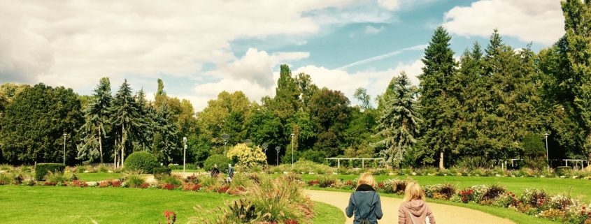 margaret island-budapest-rose garden