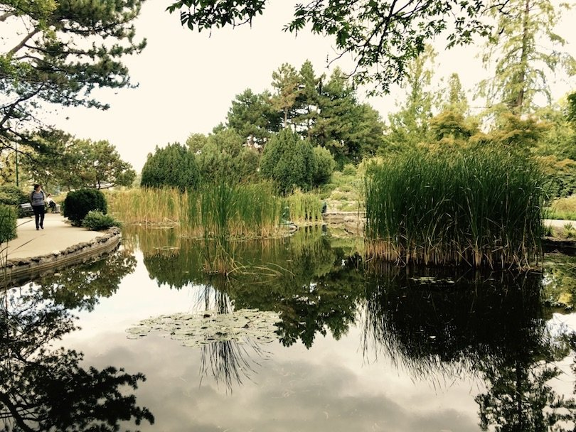 margaret island-budapest-japanese garden