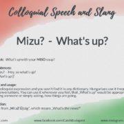 mizu-whats-up